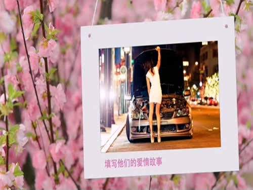 AE浪漫樱花经典粉色电子相册模板