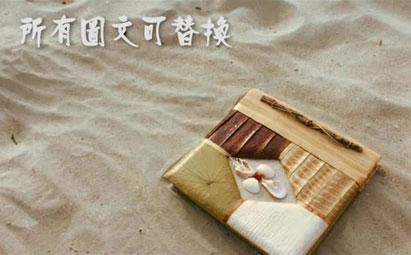 AE婚礼书本翻页视频电子相册模板