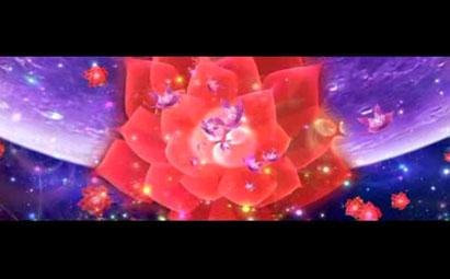 高清星空花海视频LED鲜花背景素材