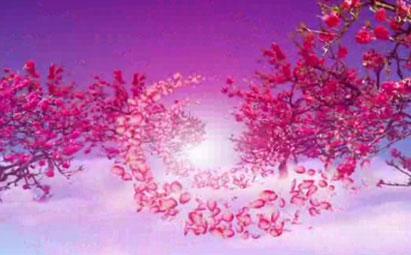 超唯美梅花花瓣飘落LED鲜花视频素材