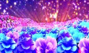 震撼花海开场LED晚会演出背景视频素材