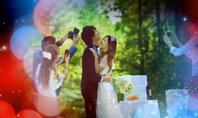 会声会影X6梦幻眩光动感婚礼相册展示视频模板