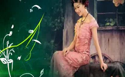 会声会影X6绿色温馨婚礼相册视频模板
