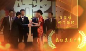 会声会影年会全套颁奖表彰视频模板