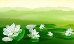 水墨中国风茉莉花LED晚会背景视频素材