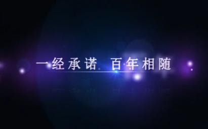 AE紫色唯美携手一生婚礼开场视频模板