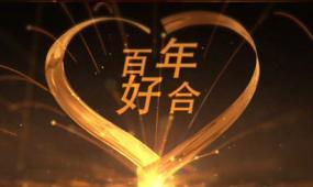AE尊贵豪华婚礼相册片头视频模板