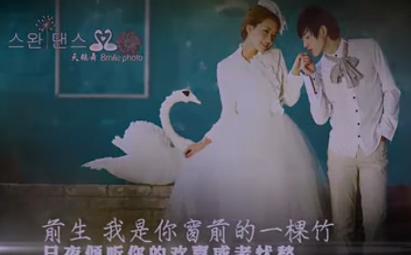 AE梦幻掌心婚礼电子相册视频模板