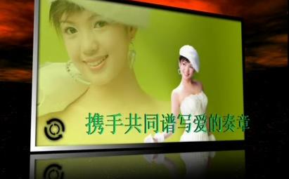 AE唯美电子相框婚礼写真视频模板
