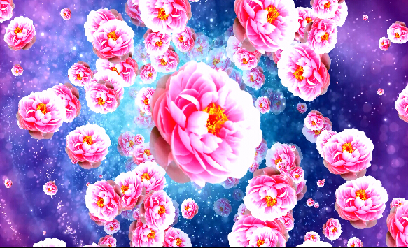 LED喜庆中国风波点粉色视频素材
