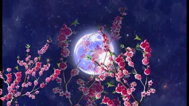 LED唯美桃花月亮舞台背景视频素材