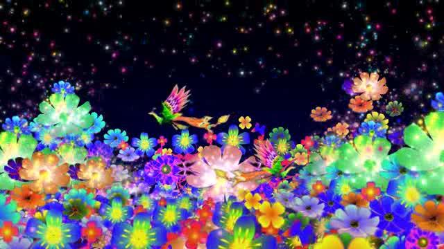LED凤凰花卉蝴蝶视频视频素材