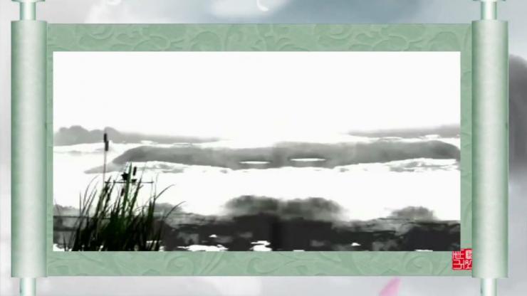 梦幻花瓣飘落仙境视频