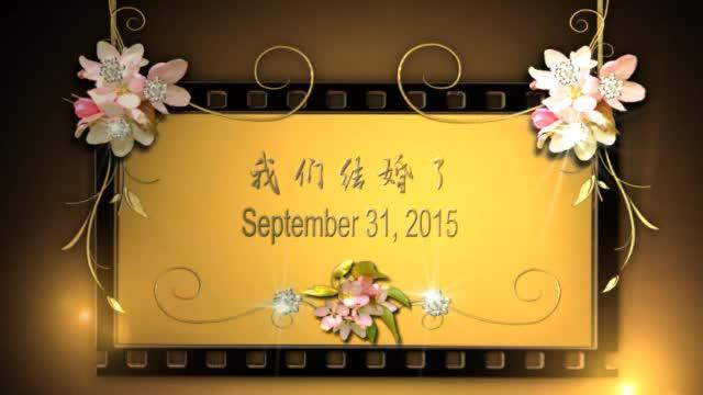 AE浪漫婚礼婚庆电子相册视频模板