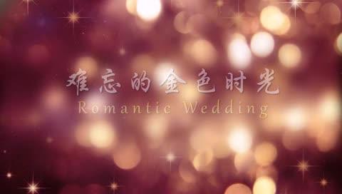 AE金色时光婚礼电子相册婚礼视频模板