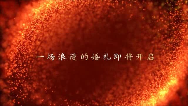 AE金色粒子婚礼片头视频模板