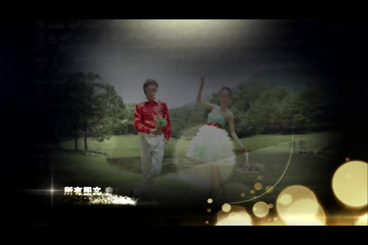 AE梦幻唯美系婚礼电子相册视频模板