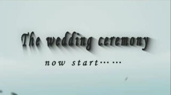 唯美英文字母婚礼开场AE模板