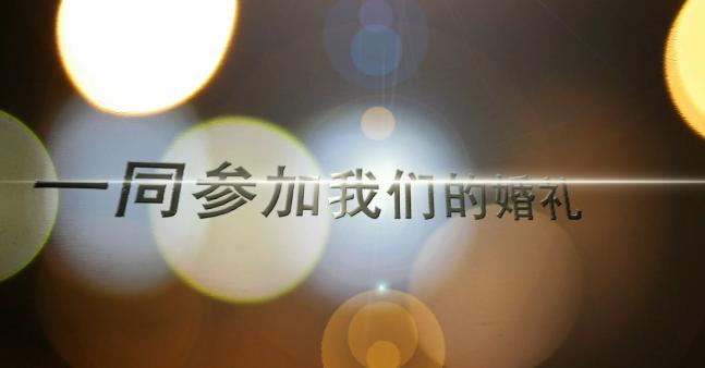 AE动闪婚礼手册视频模板