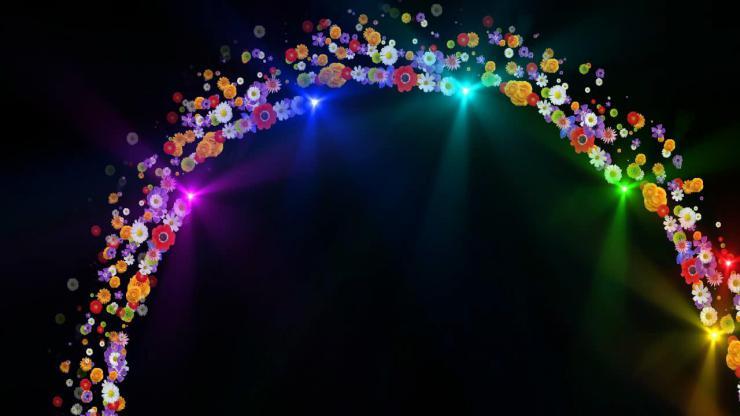 唯美彩虹鲜花视频素材