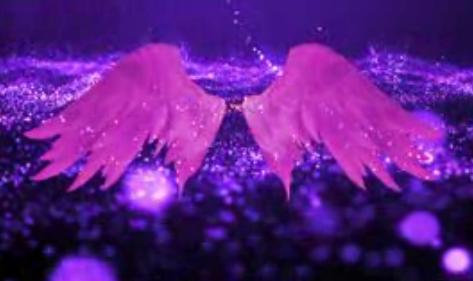 唯美天使翅膀 粒子星光 婚礼婚庆LED大屏幕视频动态素材