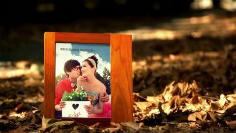 AE唯美田园婚礼相册视频模板