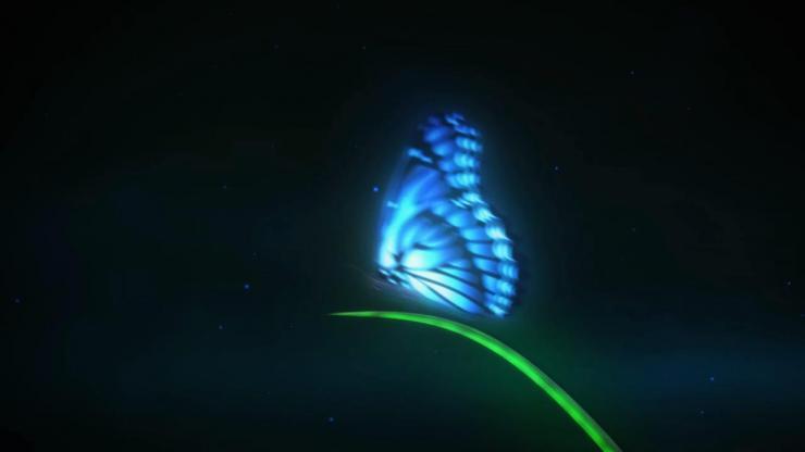 蝴蝶飞舞logo