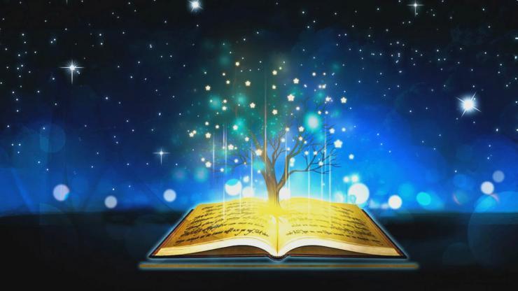 梦幻树书的世界