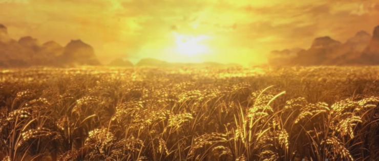 金色麦田 麦浪 丰收季节