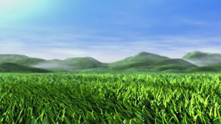 青色草原麦浪