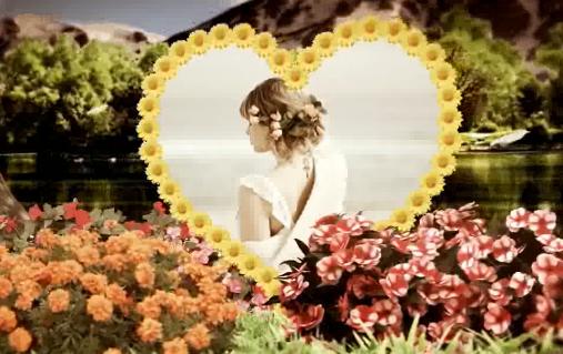 AE爱情花园婚礼电子相册视频模板