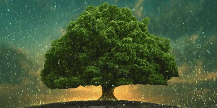 爱心蜡烛 祈福大树 生命之歌 LED大屏幕背景视频