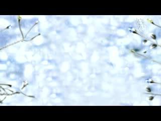 LED梦幻 落叶唯美视频背景