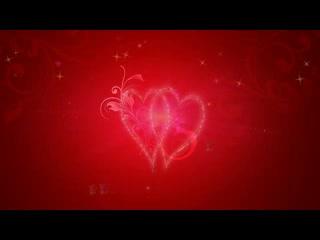 LED婚礼 唯美爱心玫瑰 视频背景