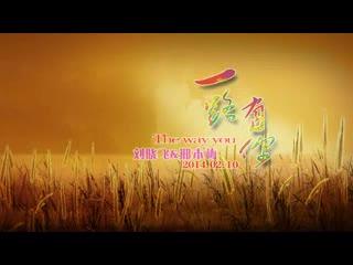 会声会影X5  婚礼MV电子相册开场预告片视频模板