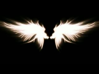LED婚礼  梦幻 隐形的翅膀  视频背景素材