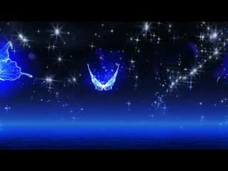 LED视频背景  唯美蝴蝶飞舞