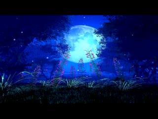 LED婚礼  浪漫月光 视频背景素材