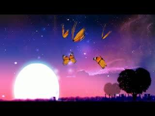 LED婚礼  浪漫蝴蝶月光  背景视频素材