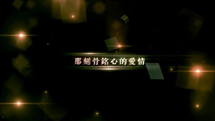 AE震撼婚礼庆典视频模板