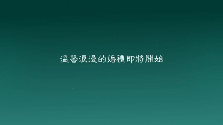 AE海景恋情婚礼相册视频模板