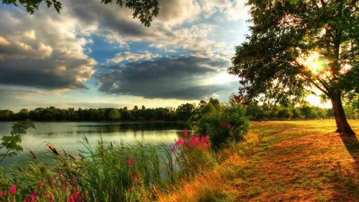 大自然美景动态视频