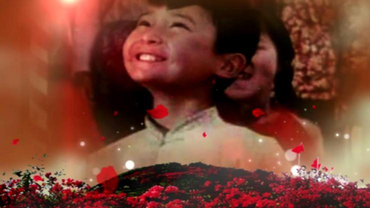 映山红革命歌曲背景视频