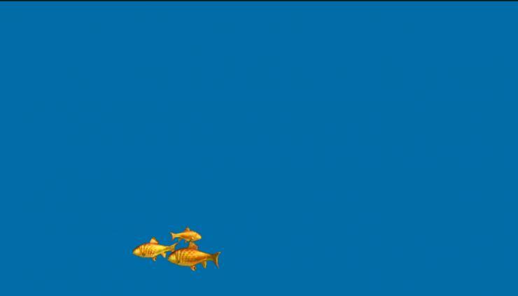 金鱼动态视频素材