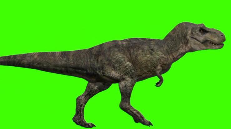 恐龙动态视频素材