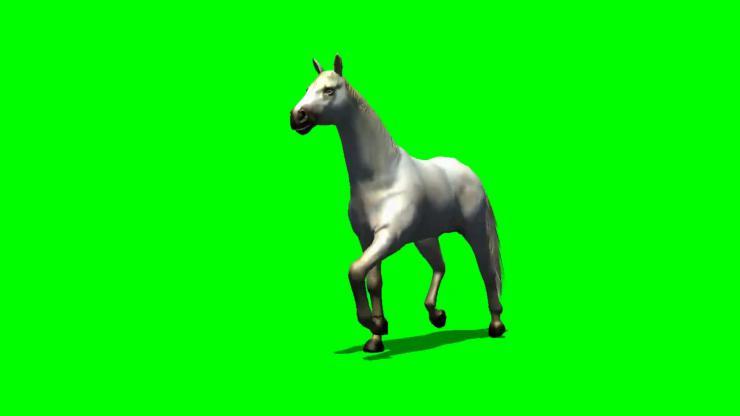 马动态视频素材02