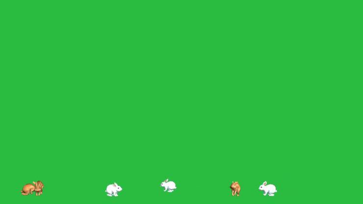 兔子动态视频素材