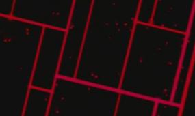 酒吧vj 前場紅色線條 視頻素材