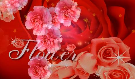 玫瑰与牡丹LED婚礼视频素材