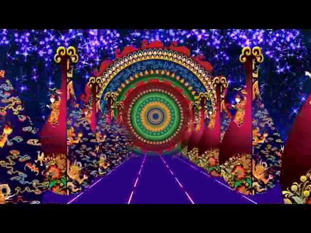 琵琶 民族 乐器 花纹 视频素材